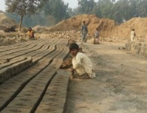CLAAS Welcomes Punjab government's ordinance banning child labour in brick kilns